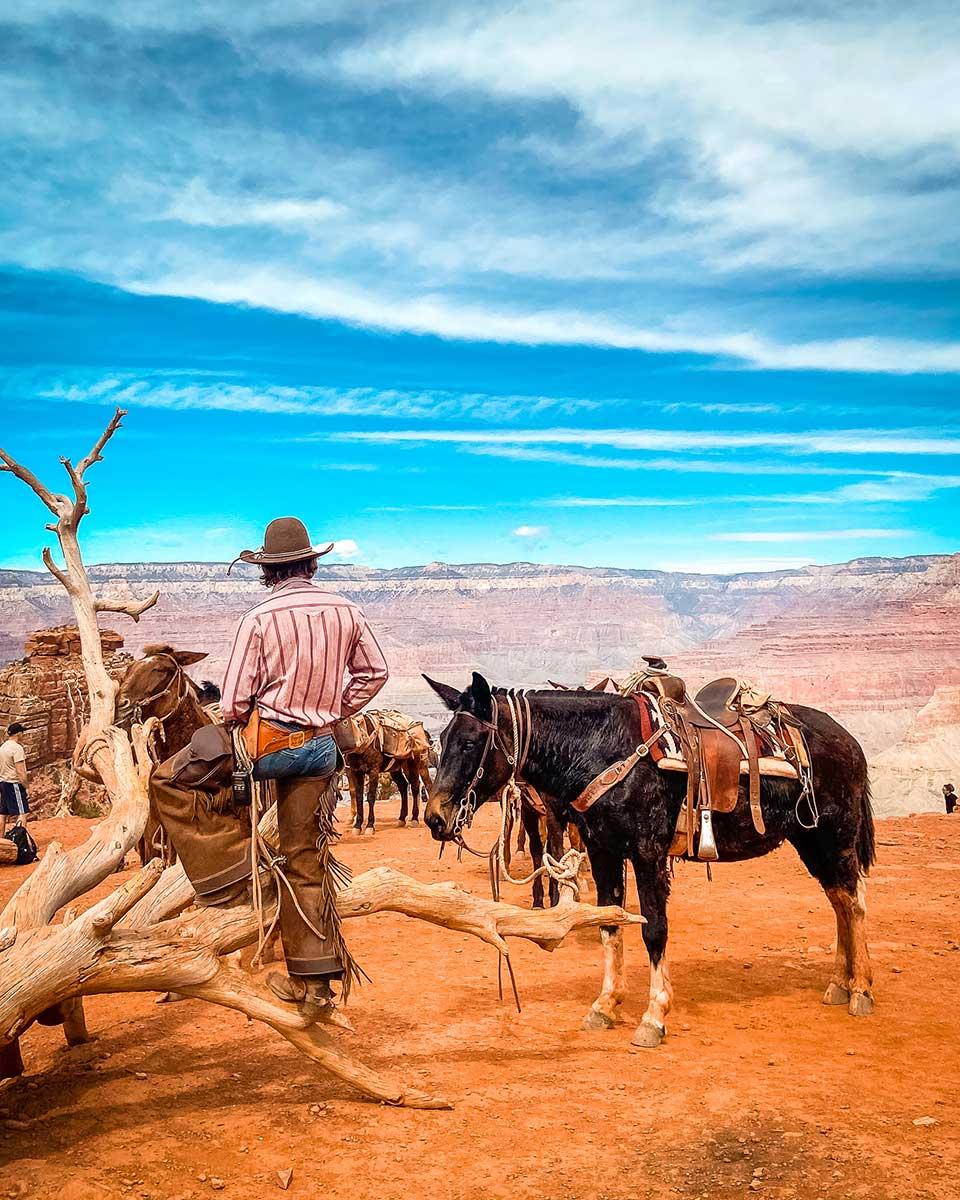 grand canyon cowboy